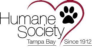 Home Humane Society Tampa Bay