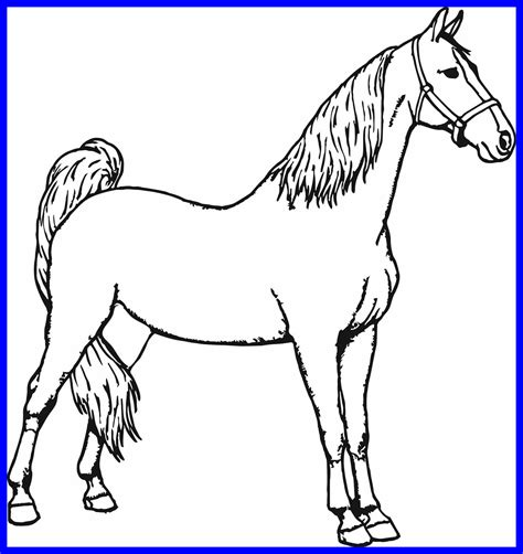 Horse coloring book pages sheets and pictures 001