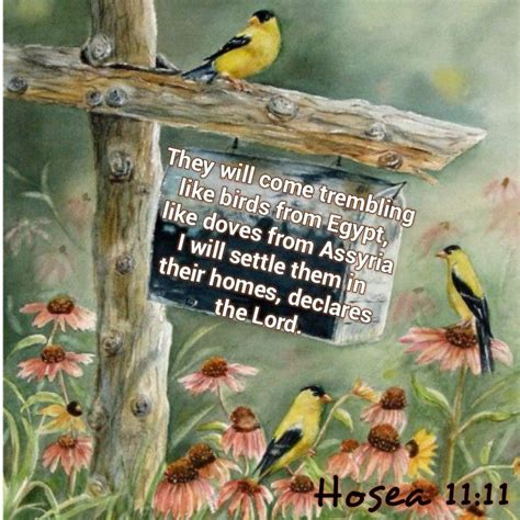 Hosea 11 11 They will come from Egypt trembling like