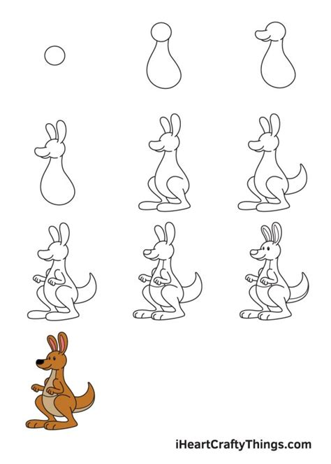 How To Draw A Kangaroo We Draw Animals Step by Step
