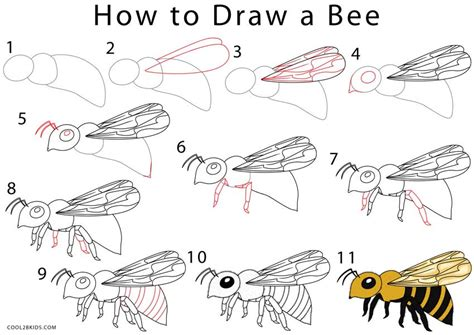 How To Draw a Bee Step by Step