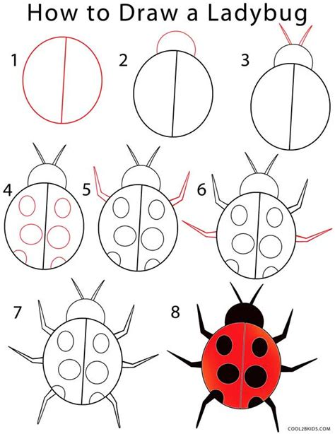 How To Draw a LadyBug Step by Step