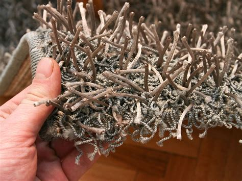 How to Choose a Good Carpet 7 Steps with Pictures wikiHow