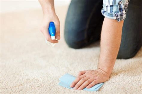 How to Clean Make Up from Carpet