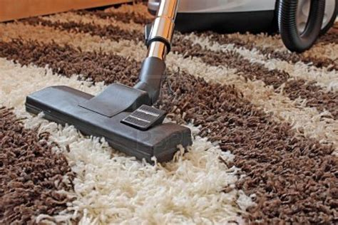 How to Clean and Deodorize Your Carpet dummies