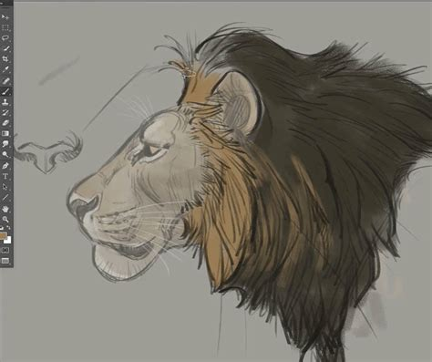 How to Draw Animals Course Big Cats The Art of Aaron