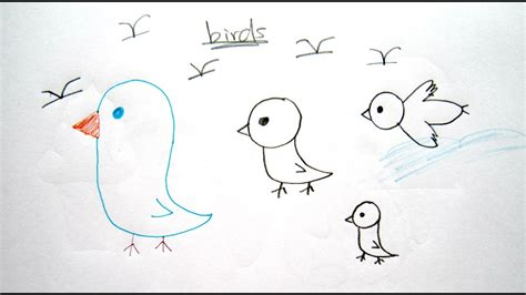 How to Draw Cartoon Birds