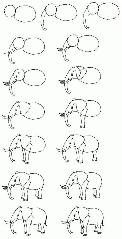 How to Draw Cartoon Elephants African Animals Step by