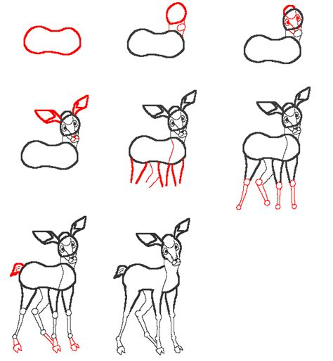 How to Draw Deer Step by Step Drawing Lessons DrawingNow