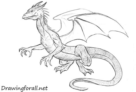 How to Draw Dragon Drawings how to draw cartoons online