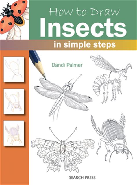 How to Draw Insects in simple steps Dandi Palmer