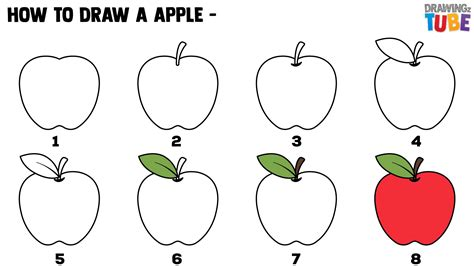How to Draw Realistic or Cartoon Apples with Easy Step by