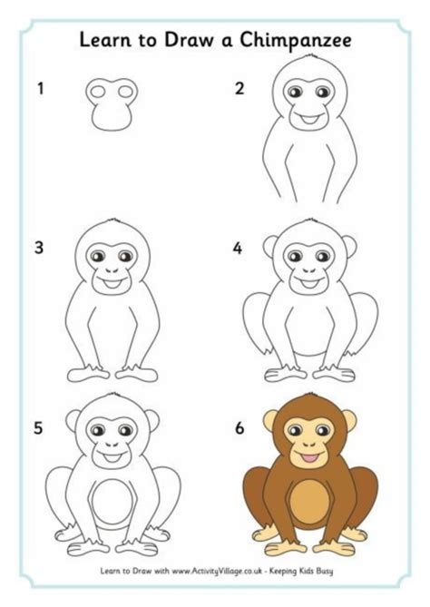 How to Draw a Chimpanzee Learn How to Draw Animals