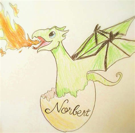How to Draw a Dragon from the Harry Potter Books Draw Fluffy