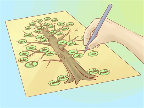 How to Draw a Family Tree 10 Steps with Pictures wikiHow