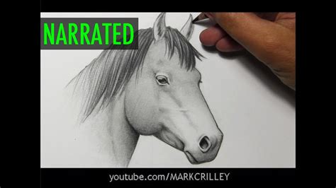 How to Draw a Horse Narrated Step by Step YouTube