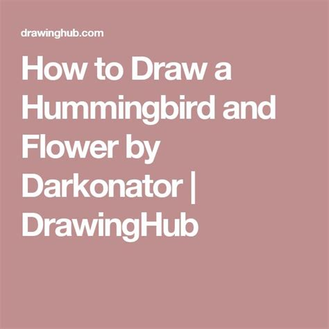 How to Draw a Hummingbird and Flower by Darkonator DrawingHub