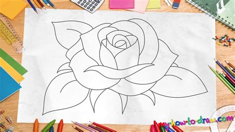How to Draw a Rose Step by Step Free Drawing Lessons