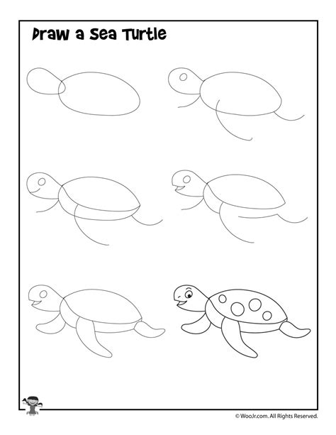 How to Draw a Sea Creature Sea Creature Step by Step