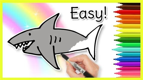 How to Draw a Shark Easy Drawings YouTube
