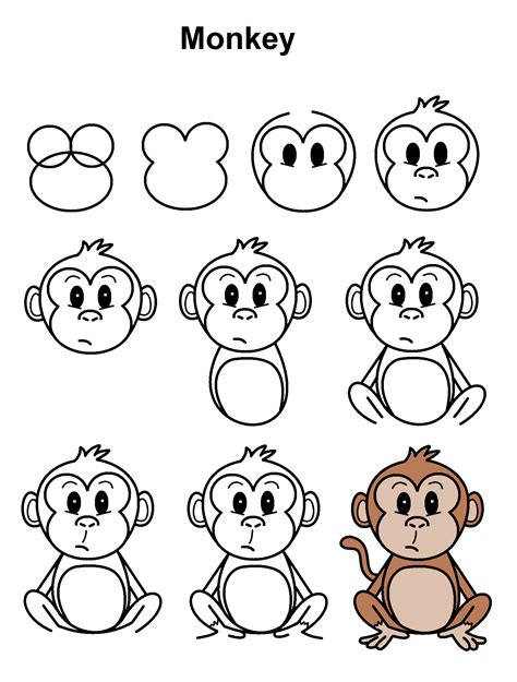 How to Draw a Simple Monkey Step by Step forest animals