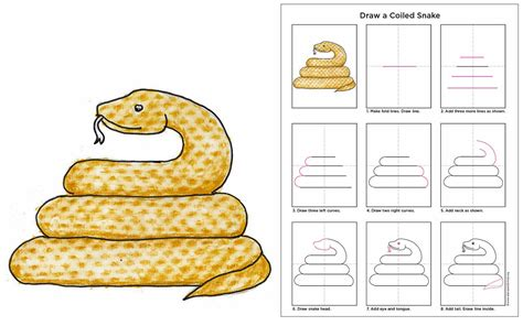 How to Draw a Snake Easy Step by Step Drawing Lessons