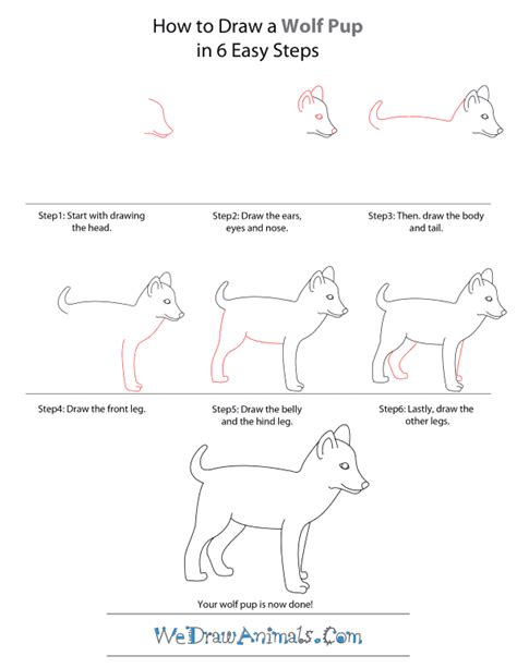 How to Draw a Wolf Pup Wedrawanimals