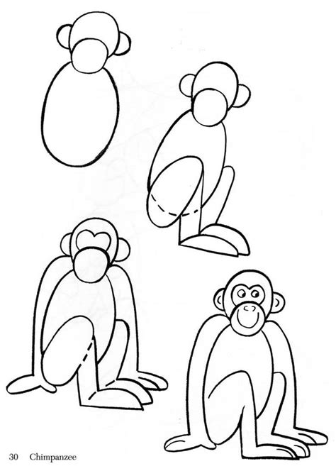 How to Draw an Easy Monkey Step by Step forest animals