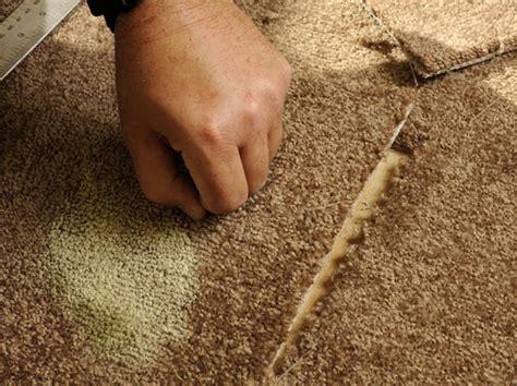 How to Fix Damaged Pile Carpet dummies
