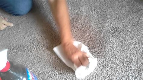 How to Get Stains Out of Carpets Using Only Vinegar YouTube