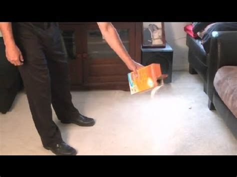 How to Get the Wet Smell Out of Flooded Carpet Carpet