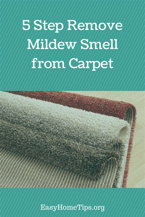 How to Remove Carpet Mildew Smell DoItYourself
