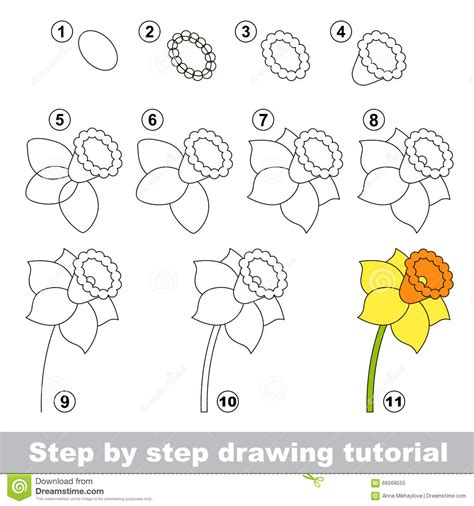 How to draw a daffodil flower Step by step Drawing tutorials