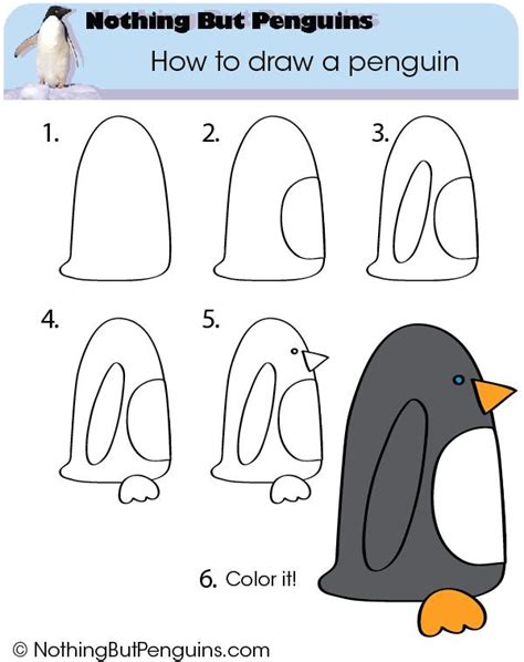 How to draw a penguin Nothing But Nothing But Penguins