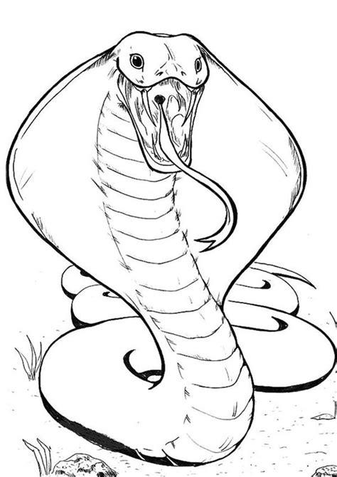 How to draw easy Online Printable Coloring Pages