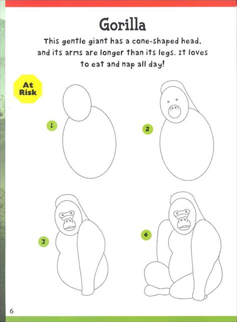 How to draw forest animals step by step animals with