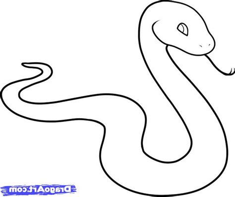 How to draw snakes step by step animals with our FREE