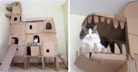 Human Builds A Dragon Shaped Cardboard House For His Cat