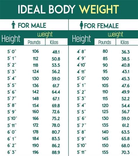 Ideal Body Weight Calculator to Calculate average body