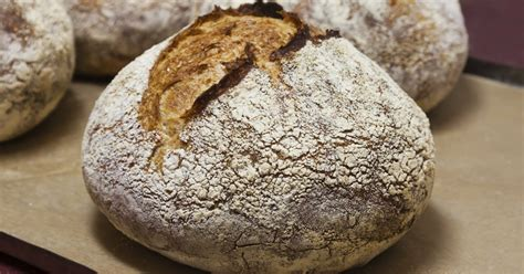 Is Any Bread Actually Healthy A Must Read Greatist