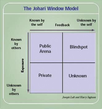 Johari Window Nursing Crib