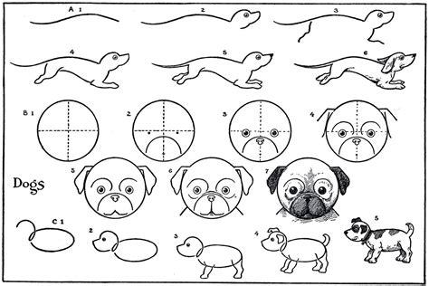 Kids Printable Draw Some Dogs Pug Dachshund The