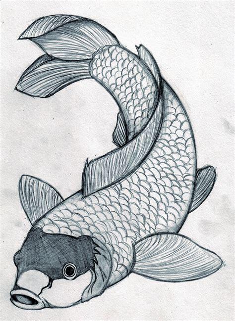 Koi fish drawings Drawing Factory