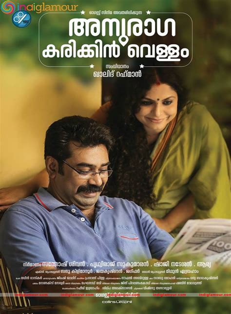 Malayalam Film 2013 image 19