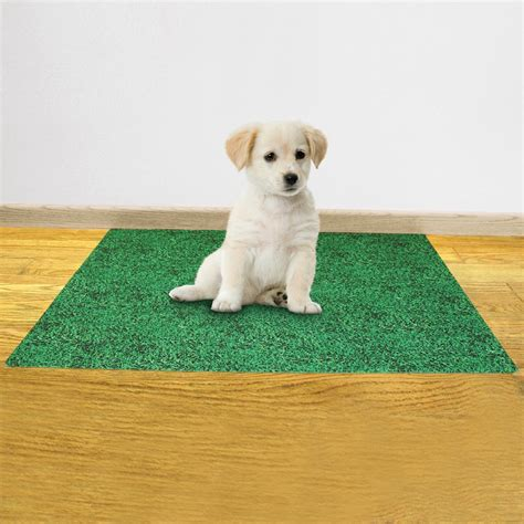 Leak Resistant Puppy Potty Pad from Collections Etc