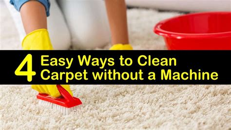 Learn How to Deep Clean Your Carpets Without Chemicals