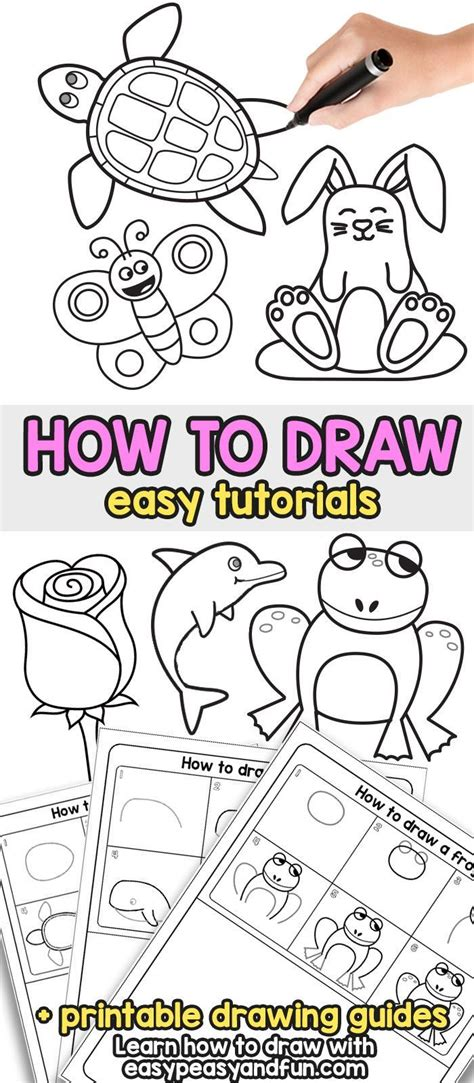 Learn How to Draw Step by Step Drawing Lessons for Kids