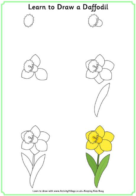 Learn to Draw a Daffodil Activity Village