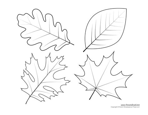 Leaves Printable Templates Coloring Pages