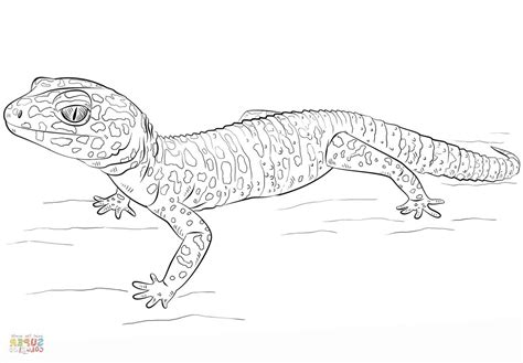 Leopard Gecko Coloring Pages Coloring pages Worksheets